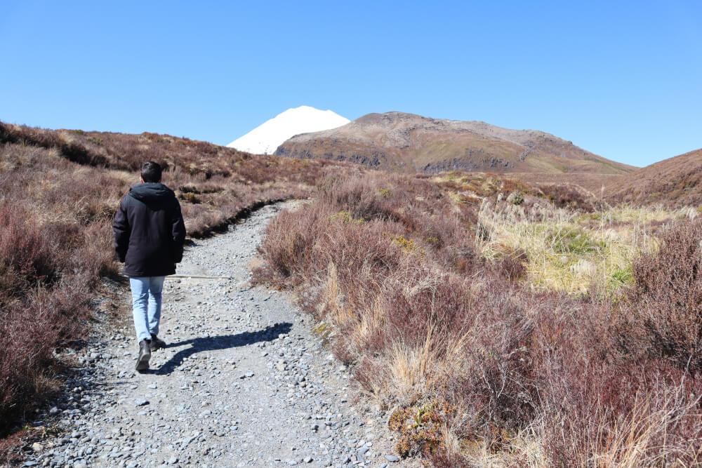 Dylan Sigley walking to freedom
